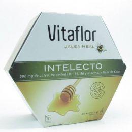 VITAFLOR JALEA REAL INTELECTO AMPOLLA BEBIBLE 200 ML 20 AMP