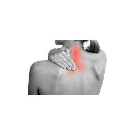 MD-SHOULDER SOL ESTERIL COLAGENO INYECTABLE 2 ML 10 VIALES