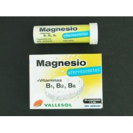 VALLESOL MAGNESIO +VITAMINA B 24 COMP EFERV
