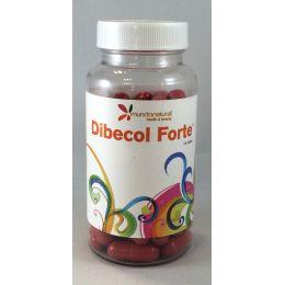 DIBECOL FORTE 60 CAPS
